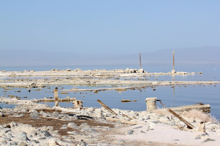 How did a mistake give birth to the Salton Sea?
