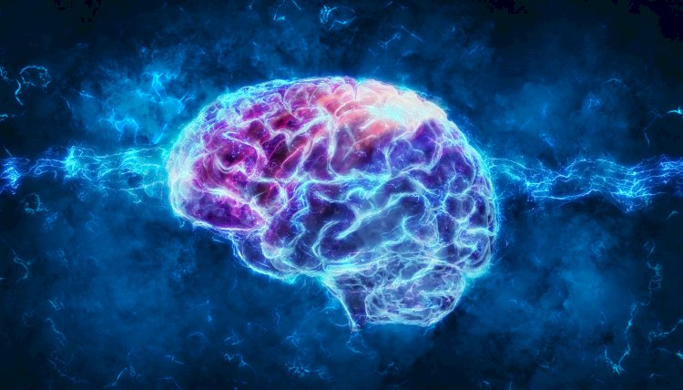 Brains Unknown Facts Can Surprise You.