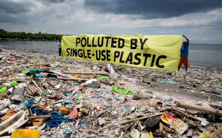 Harmful effects of plastic waste on the environment