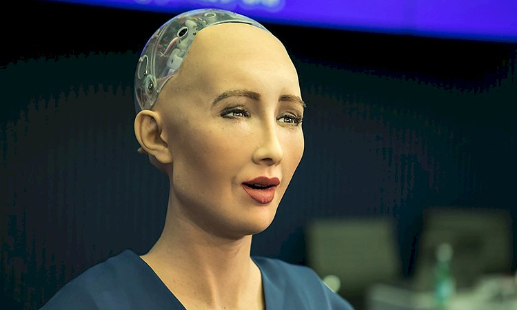 Artificial Intelligence and Robot Sophia
